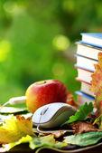Rojo, libros y ratón apple. — Foto de Stock