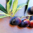 Stock Photo: Ripe olives on branch
