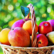 Ripe fruits on basket — Stock Photo
