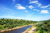 Ardila river on deep valley,Portugal  — Foto de Stock