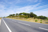 Country road in Alentejo,south of Portugal  — Stock Photo