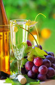 Glass and bottle of alvarinho wine — Stock Photo