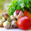 Tomato, garlic and fresh vegetables — Stock Photo #48138613