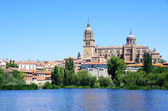 Cathedral of Salamanca and Tormes river — Foto de Stock