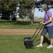 Stock Photo: Lawn fertilizer