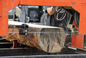 Portable saw mill — Foto Stock