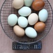 Royalty-Free Stock Photo: Naturally colored eggs of Araucana hens