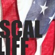 Fiscal cliff words on USA flag — Stock Photo