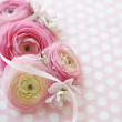 Polka dots and pink flowers — Stock Photo
