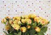Yellow roses with polka dots — Stock Photo