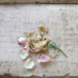 Old document pages with faded rose — Stock Photo
