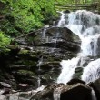Stock Video: Waterfall in CarpathiMountains