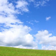 Stock Video: Boy going on green grass and sky background