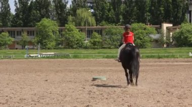 Equestrian sport — Stock Video