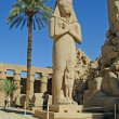 Statue of Ramses II in Karnak temple in Luxor, Egypt — Stock Photo #13313110