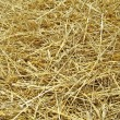 Stock Photo: Hay background
