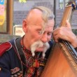 Old free Cossack. Bandurplayer — Stock Video #13391141