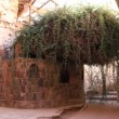The burning bush. Saint Catherine&#039;s Monastery. Sinai. Egypt - Stock Photo