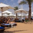 Beach in Egypt — Stock Video