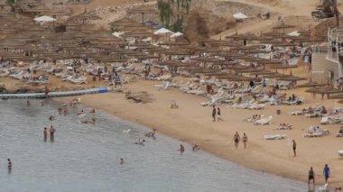 Beach in Egypt — Stock Video