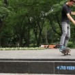 Stockvideo: Skateboarders