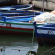 Stock Video: Boats in harbour