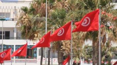 Bandera nacional de túnez — Vídeo de stock