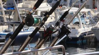 Spinning rods — Stock Video