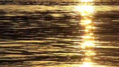 Sun glints — Stock Video
