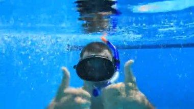 Underwater swimming — Stock Video