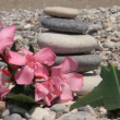 Zen stones on a beach — Stock Video