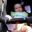 Baby in perambulator — Video Stock