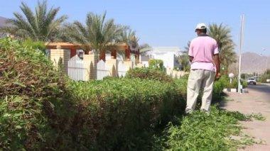 садовник — Стоковое видео