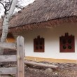 Ukrainihut with thatched roof — Stock Video #20289137