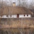Ukrainihut with thatched roof — Stock Video #20289919
