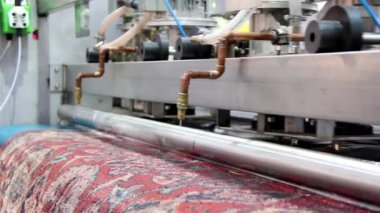 Automatic washing and cleaning of carpets — Stock Video