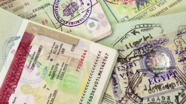 International passports with visas — Stock Video