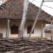 Stock Video: Ukrainian hut with thatched roof