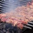 Stock Video: Shish kebab
