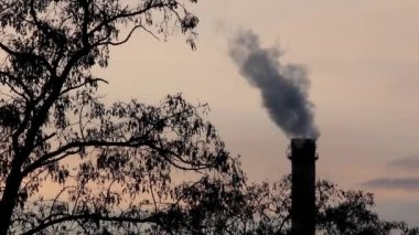 Smoking chimney of heat electropower station timelapse — Stock Video