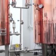 Copper tuns for brewing at a brewery — Stock Video