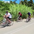 Stock Video: Group of cyclists on road