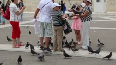 People and pigeons near Parliament and Syntagma Square in Athens, Greece — Stock Video