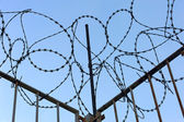 Barbed wire with fence against the sky — Stock Photo