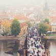 Charles bridge — Stock Photo #16762001