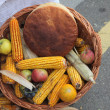 Autumn Harvest — Stock Photo #13983176