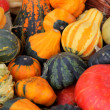 Royalty-Free Stock Photo: Colorful pumpkins collection