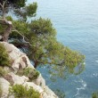 Stock Photo: Pictorial blue Adriatic sewith rocks