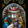 Nativity Scene, stained glass — Stock Photo #14167291