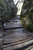 Wooden pathway in Plitvice Lakes national park in Croatia — Stock Photo